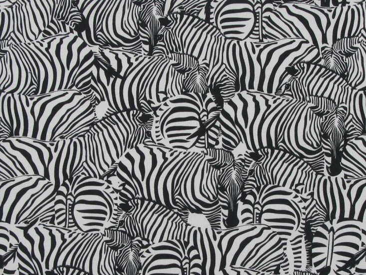 Zebra Dazzle Digital Cotton Print