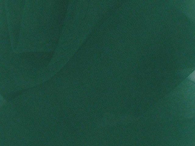 Chiffon 50 Denier - Bottle Green