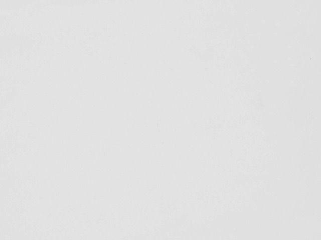 Polyester Spandex - White