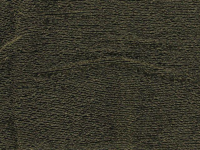 Nylon / Metallic Stripe - Gold